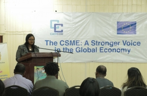 Dr. Olivia Smith, Deputy Program Manager CSME, speaking at the workshop