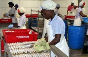 Crfm guyana-fish-photo