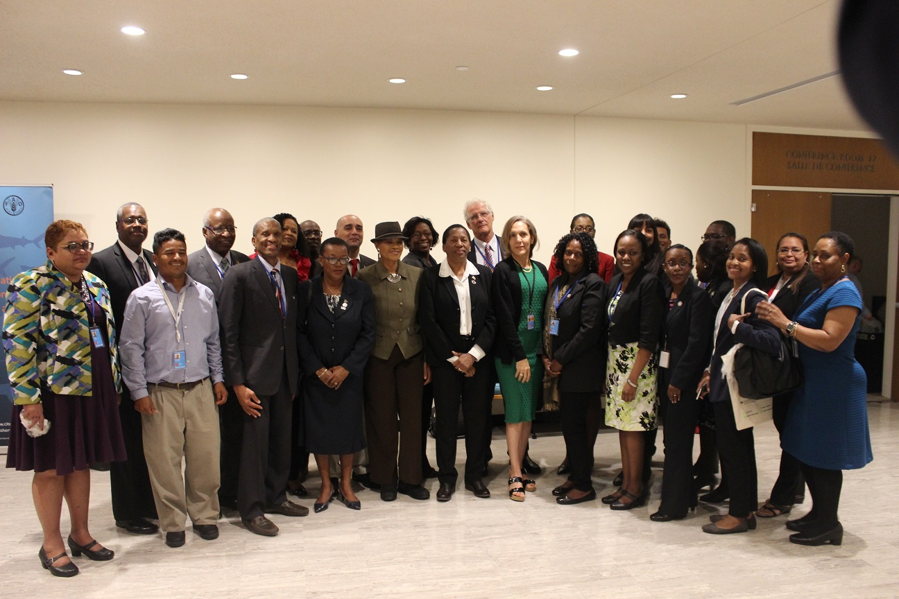 CARICOM family at the UN SDG 14 Conference photo