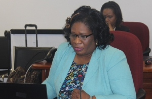 Ms. Jennifer Britton, Deputy Progamme Manager, ICT4D at the round table on Thursday