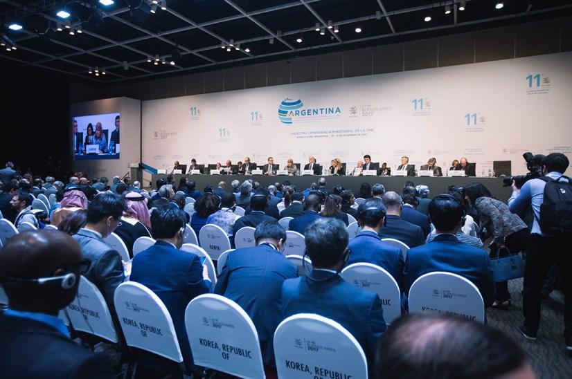 Plenary at the WTO Ministerial (photo via WTO)