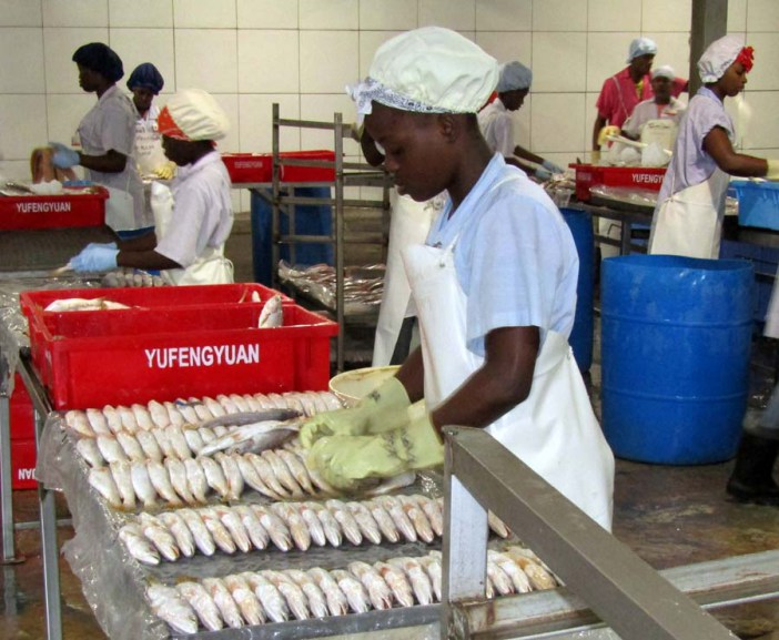Crfm guyana-fish-photo