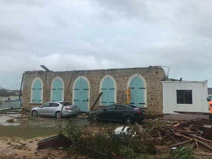 Anguilla damage