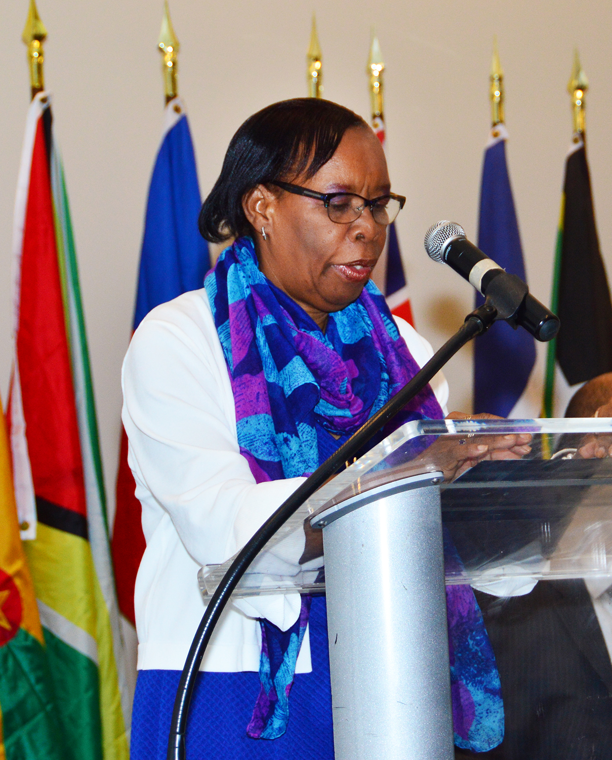 Dr. Philomen Harrison, Project Director, Regional Statistics, CARICOM Secretariat, addresses the opening ceremonyClick and drag to move Dr. Philomen Harrison, Project Director, Regional Statistics, CARICOM Secretariat, addresses the opening ceremony