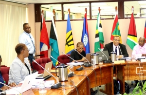 The 46th Meeting of Officials of COTED underway on Thursday