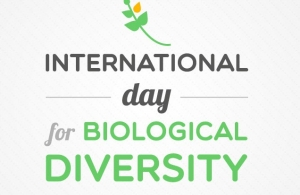 International-day-for-biological-diversity-may-22