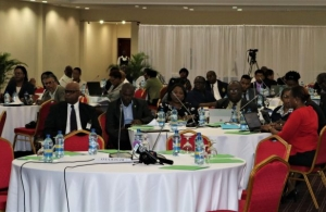 Participants at the Consultation i n Georgetown, Guyana