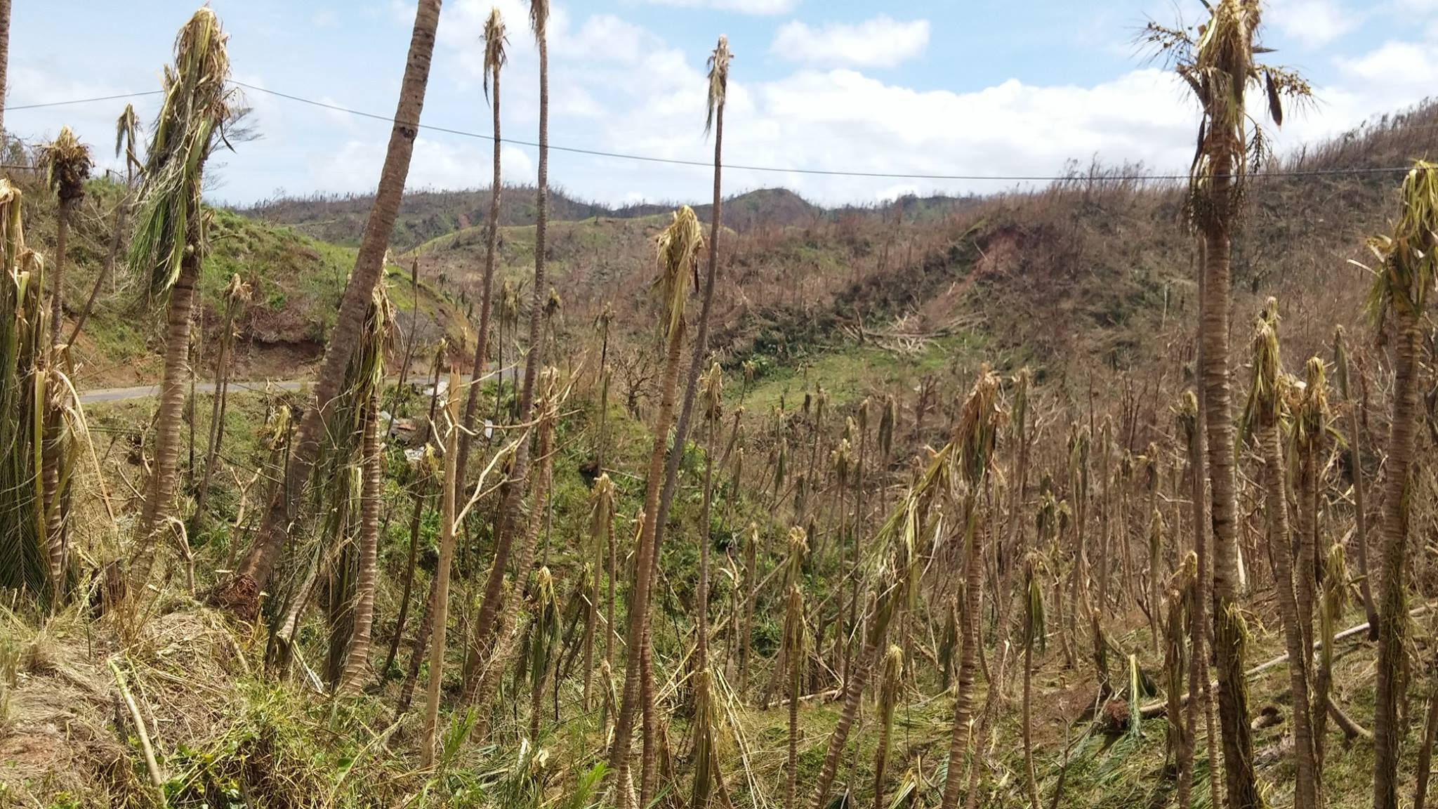 Barren landscape after Hurricane Maria struck Dominica