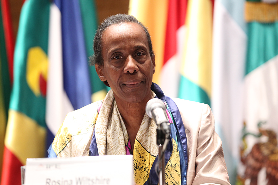 Dr. Rosina Wiltshire, CARICOM Advocate For Gender Justice