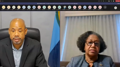 Photo of Opening Remarks by the Secretary-General, CARICOM Dr Carla Barnett at the CARICOM Ministerial Preparatory Meeting ahead of the 26th Session of the  Conference of the Parties (COP26) of the United Nations Framework Convention on Climate Change (UNFCCC)