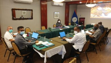 Photo of Arrival Statement: CARICOM Election Observation Mission to Belize