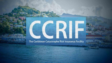 Photo of CCRIF offers 31% discount for hurricane insurance: CARICOM BUSINESS