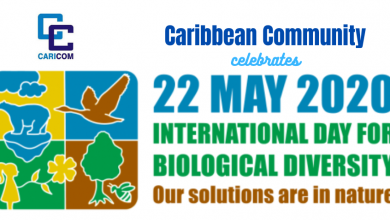 Photo of As World observes International Biodiversity Day CARICOM calls for action to address biodiversity loss