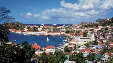 Photo of Grenada fiscal revenues exceed target by 10.6%:  CARICOM BUSINESS