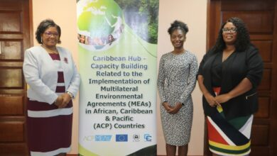 Photo of CARICOM and UNEP extend cooperation on environment