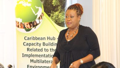 Photo of Capacity Building related to the Implementation of Multilateral Environmental Agreements (MEAS) in African, Caribbean and Pacific (ACP) Countries – The Caribbean Hub