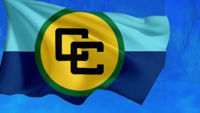 Photo of Statement by the  Caribbean Community (CARICOM)  on the Israel-Palestine Conflict