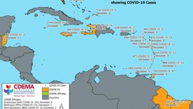 Photo of CDEMA and the UN convene Caribbean Partner Donor Group Meeting amid COVID-19 crisis