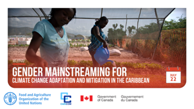 Photo of Gender Mainstreaming for Climate Change Adaptation and Mitigation in the Caribbean Webinar