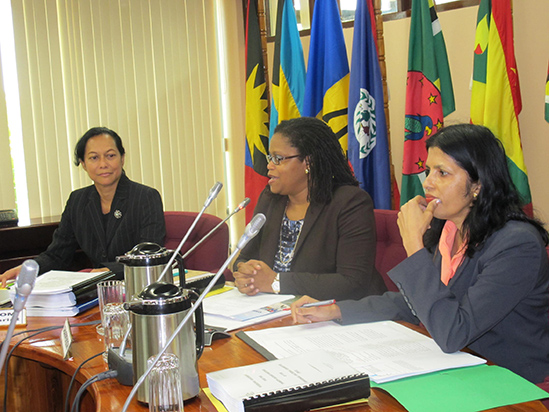 Photo of Remarks by Dr. Hilary Brown Programme Manager, Culture and Community Development Twenty-Second Meeting of the Regional Cultural Committee (RCC) Opening Ceremony Georgetown, Guyana  18 June, 2014