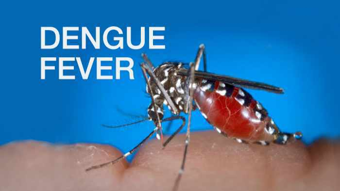 Photo of CARPHA urges region to prepare for possibility of severe dengue outbreak