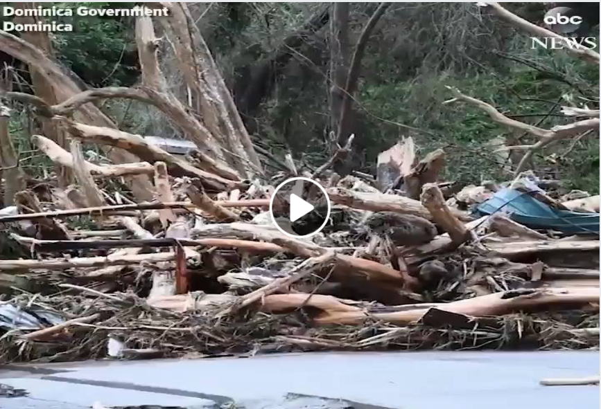 Photo of Hurricane Maria could cost Dominica billions of dollars, says CDEMA