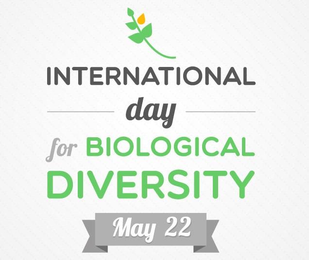 Photo of International Day of Biological Diversity – Statement by CARICOM Secretary-General