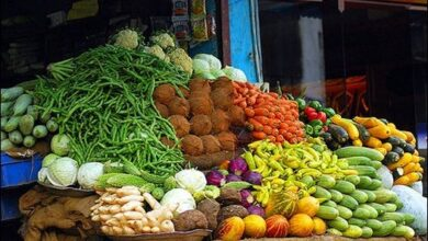 Photo of Caribbean Week of Agriculture 2021 to be launched on Wednesday