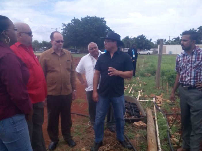 Photo of CARICOM SG tours farm during Caribbean Week of Agriculture