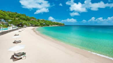 Photo of St Lucia to introduce Tourism Levy December 15:  CARICOM BUSINESS