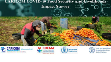 Photo of CARICOM launches COVID-19 Food Security and Livelihoods Impact Survey