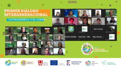 Photo of Youth engagement: Intergenerational Dialogue in Latin America and the Caribbean for Biodiversity